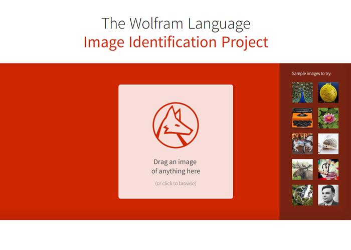 Amazing Image Identification