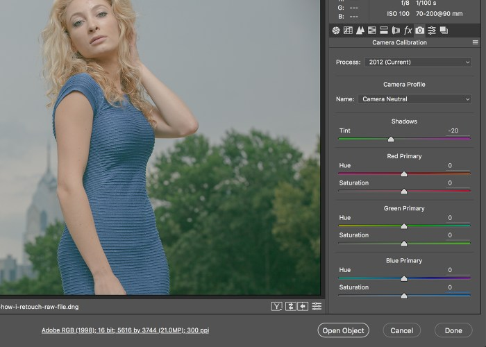 how-to-retouch-photos-camera-raw-04