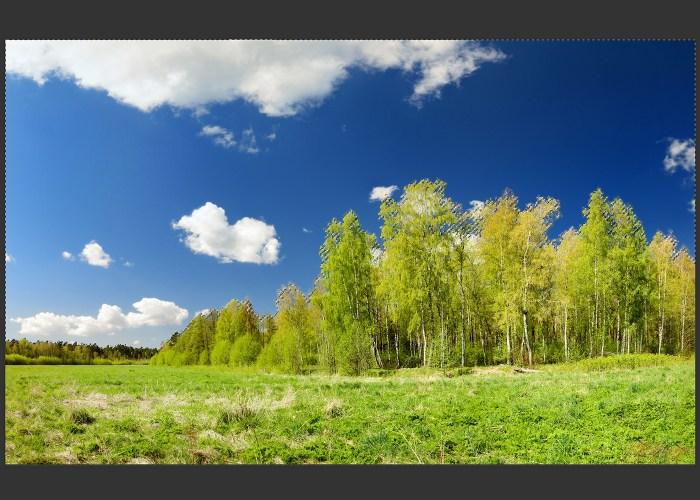 replace-sky-photo-grow-similar-04
