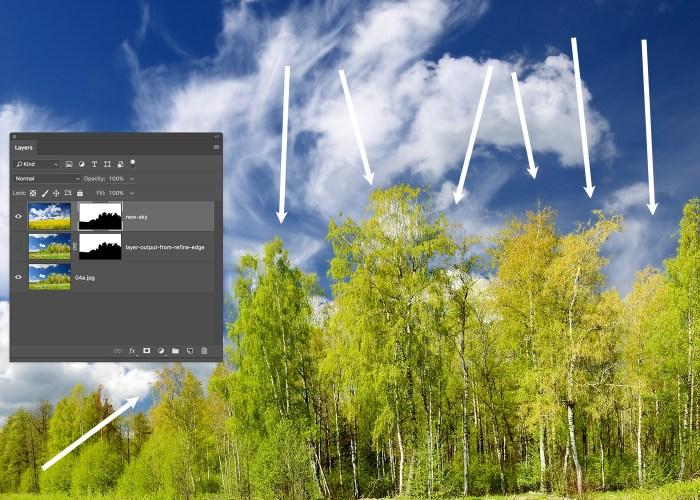 replace-sky-photo-grow-similar-09