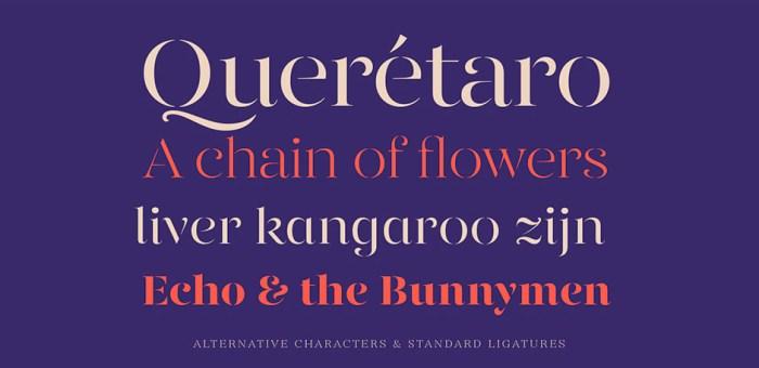 01-font-bundle-type-typeface-photoshop-01-2