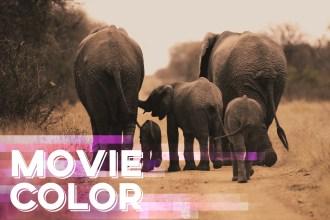 cinematic-color-grading-video-footage-premiere-pro-tutorial