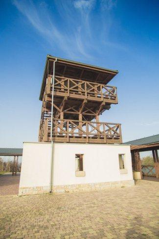 Śląski Ogród Botaniczny w Mikołowie