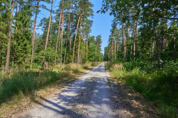 Palowice trasy rowerowe