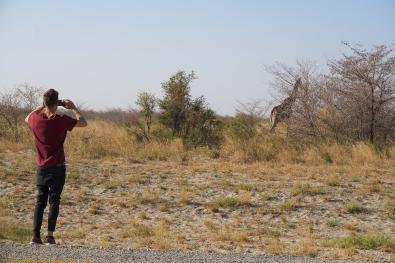 Patryk robi zdjęcie żyrafie