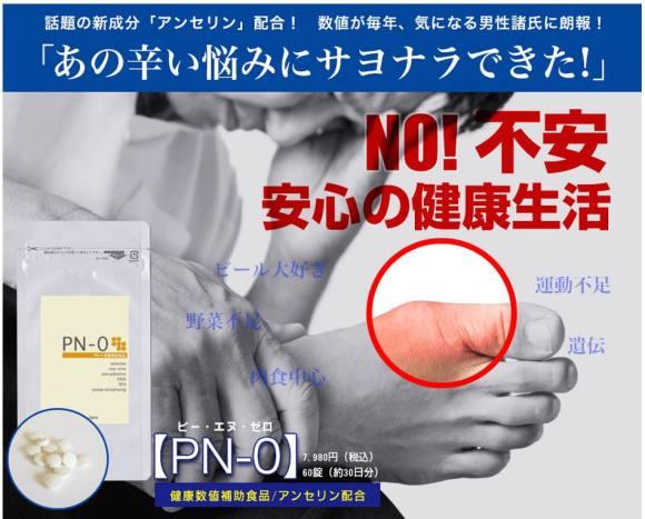 PN-0で痛風がなくなる