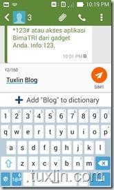 Screenshot Asus Zenfone 4 Tuxlin Blog_28