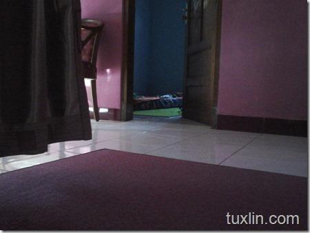 Hasil Foto Kamera Samsung Galaxy Young 2 Tuxlin Blog_01