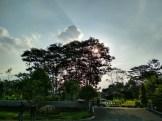 Hasil Foto KameraXiaomi Redmi 4X Siang Hari