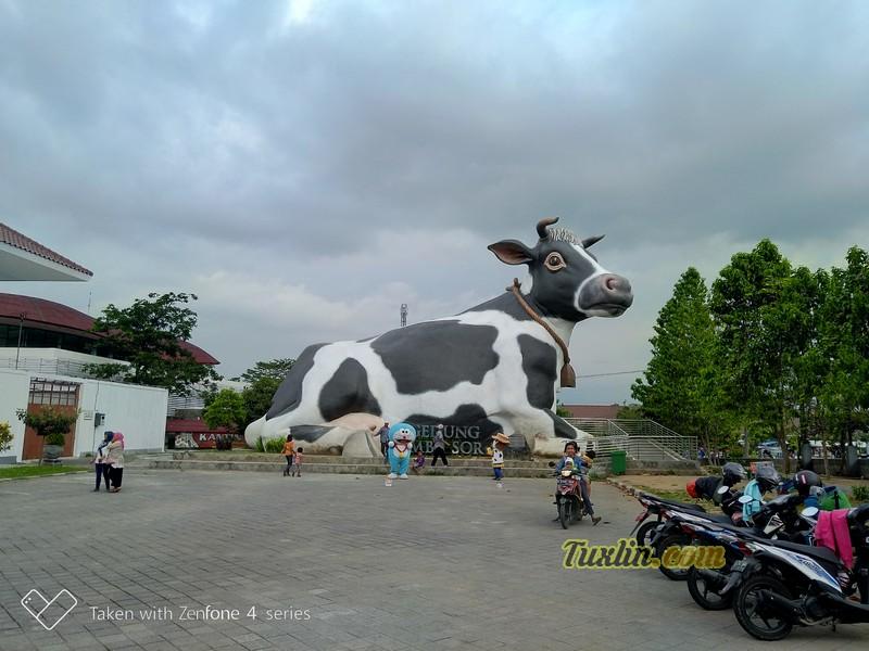 Hasil Foto KameraAsus Zenfone 4 Selfie Pro ZD552KL Siang Hari