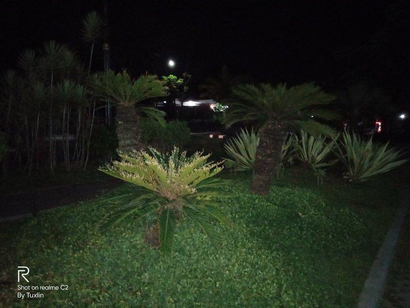 Hasil Foto Kamera Realme C2 Malam Hari dengan LED Flash
