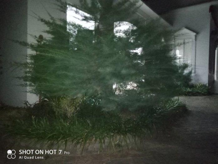 Review Kamera Infinix Hot 7 Pro: Ternyata Kayak Gini Quad Camera Murah 38