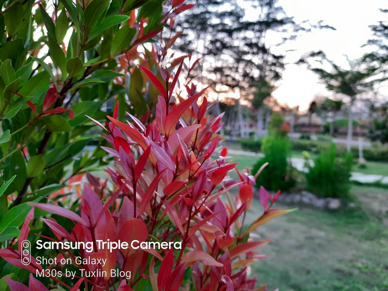 Review Kamera Samsung Galaxy M30s Berkekuatan 48MP! 27