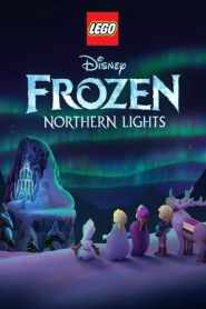 LEGO Frozen: Luces de Invierno / Lego Frozen Northern Lights