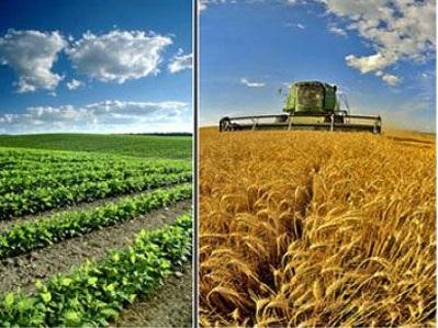 Tarım ve Gıda Alanında Kullanılan Hortumlar