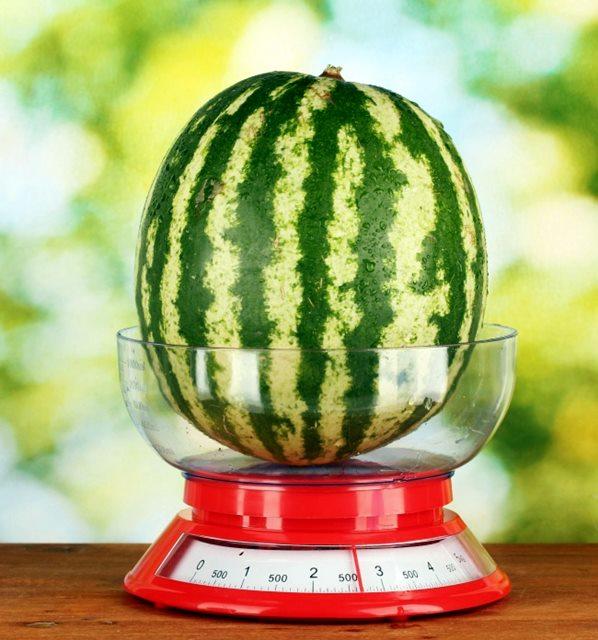 kako-izabrati-savrsenu-lubenicu-savjeti-iskusnog-poljoprivrednika-tuzlanskiba003-20160731