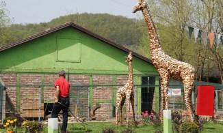 zoo-park-tuzla (4)