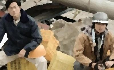 『BRIDGE はじまりは1995.1.17 神戸』(カンテレ2019年1月)あらすじ&ネタバレ 井浦新,野村周平,葵わかな出演