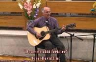 Ionel David Ilie – Doamne cata fericire