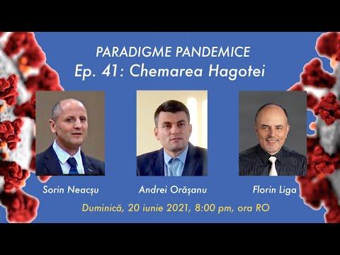 Ep: 41: Chemarea Hagotei cu Andrei Orașanu și Sorin Neacșu