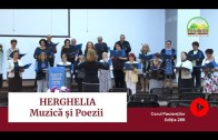 🎼 MUZICĂ | Amintiri de la HERGHELIA – Seara Festivă | Ediția 286