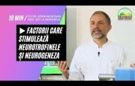 🥙 Factorii Care Stimulează Neurotrofinele și Neurogeneza | Dr. Moroșan Sorin [2021] part.20.