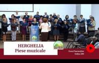 🎶🔊 MUZICĂ | Amintiri de la HERGHELIA – Seara Festivă | Ediția 295