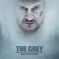 The Grey Stasera su Rai 4