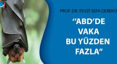 Türk profesörden çarpıcı iddia!