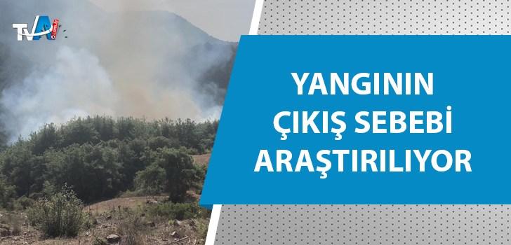 Kozan'da yeniden yangın çıktı