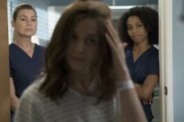 Greys Anatomy 14x04-8