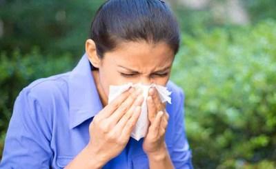 Ayurveda-allergy