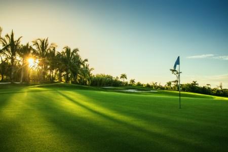 Tv Catia Fonseca Aproveite Orlando além dos parques golf