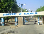 University-of-Maiduguri-TVCNews