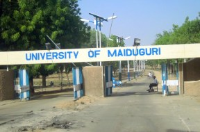 University-of-Maiduguri-TVCNews