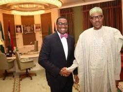Muhammadu-Buhari-Akinwunmi-Adesina-TVCNews
