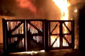 Londo-Zoo-Fire-TVCNews