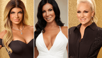 Teresa Giudice, Danielle Staub, Margaret Josephs, The Real Housewives of New Jersey, RHONJ