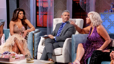 Teresa Giudice, Andy Cohen, Margaret Josephs, The Real Housewives of New Jersey, RHONJ reunion, Bravo, Denise Richards