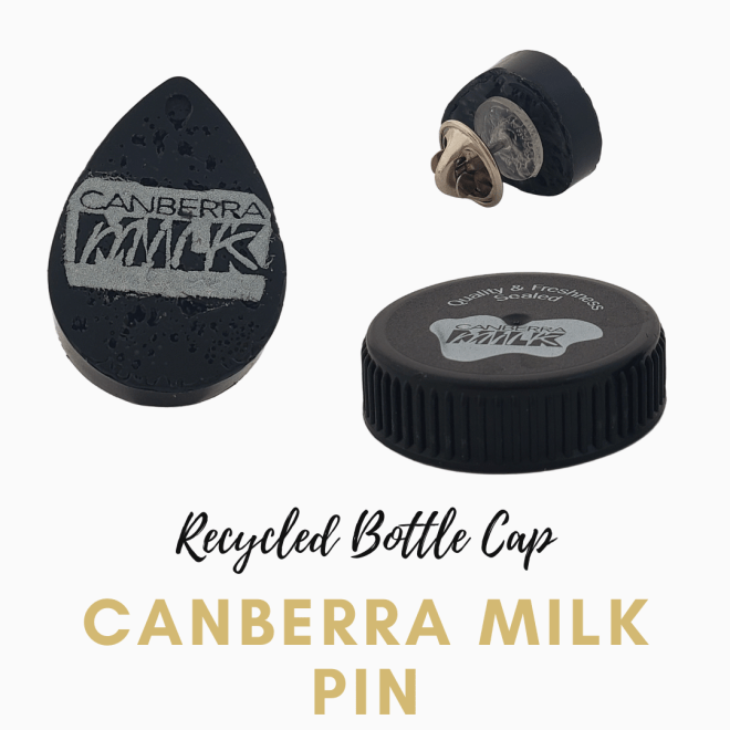 Pin made from a recycled milk bottle lid