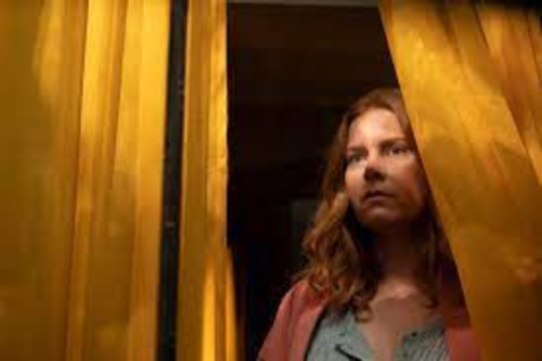 The Woman in the Window Spoiler Free Review 3