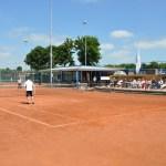 Tennisbaan Erica (14)