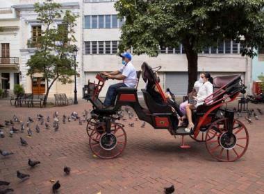 carruajes eléctricos