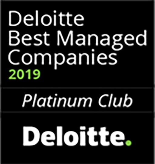 Deloitte_2019