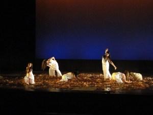 Danza contemporánea1