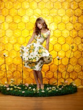 Pushing Daisies Temporada 2 - j