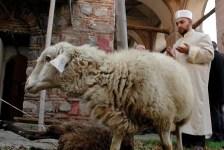 Мюсюлманите по света отбелязват празника Курбан байрам