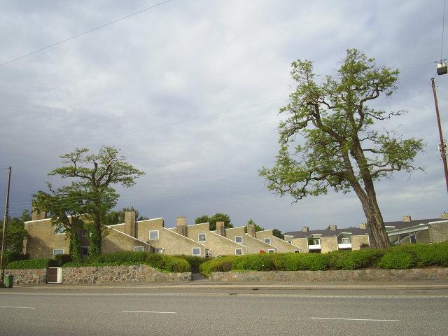 Søholm, Strandvejen, Klampenborg, build 1945 - 51 by Architect Arne Jacobsen. Photo: 11. june 2009
