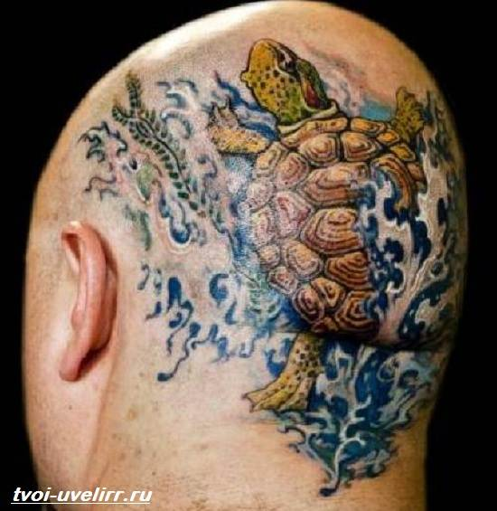 Тату-черепаха-Значение-тату-черепаха-Эскизы-и-фото-тату-черепаха-3