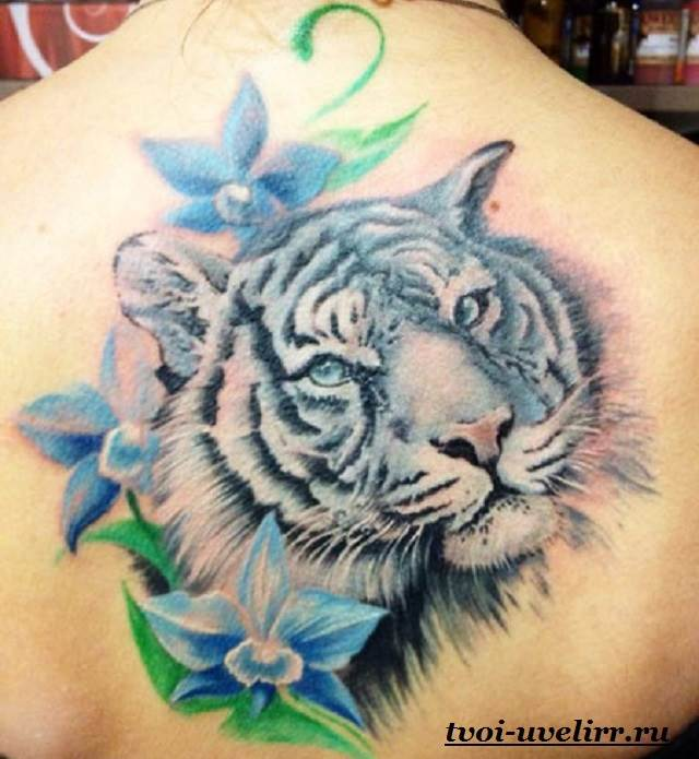Тату-тигр-и-её-значение-30